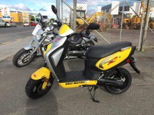 Bike rental Tauranga